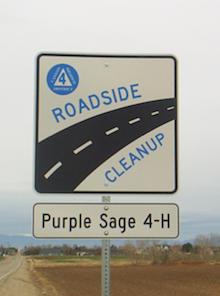 Roadside-Cleanup